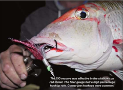 Red Throat Flasher Rigs