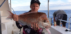 Snapper rigs and how to catch snapper