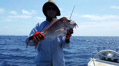 Snapper fishing, what is the best snapper rigs