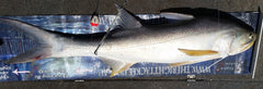 Threadfin Fishing Rig 3/0 30lb