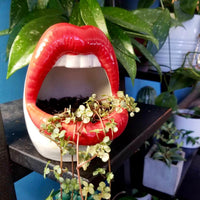Sexy Lips Planter - Wanderlushinterior - Planters on Sales with Free shipping