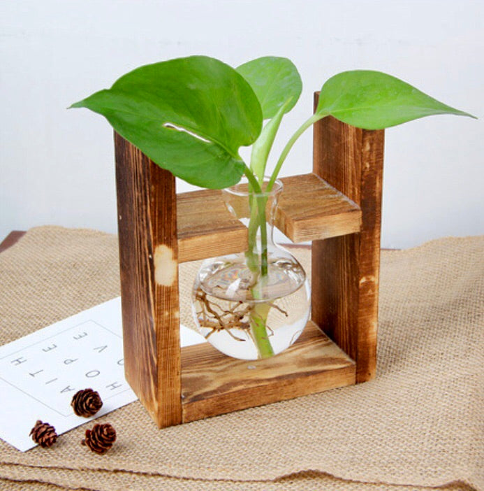 Hydroponic Propagation Station - Wanderlushinterior - Planters on Sales with Free shipping
