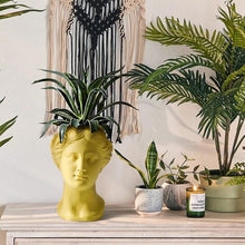 Load image into Gallery viewer, Greek Goddess Head Planter - Wanderlushinterior - Planters on Sales with Free shipping