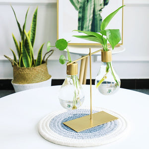 Glass Bulb Propagation Station - Wanderlushinterior - Planters on Sales with Free shipping