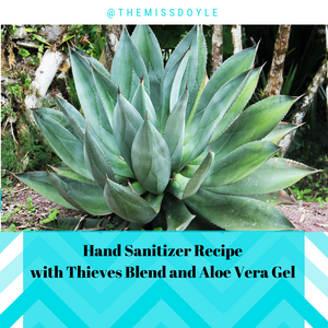 Daily Essential Oil Blend #9 Thieves Blend and Hand Sanitizer