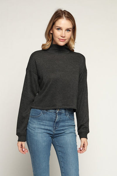 Turtle Neck Brushed Hacci