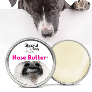 The Blissful Dog Nose Butter Moisturizes Your Dog's Dry Nose