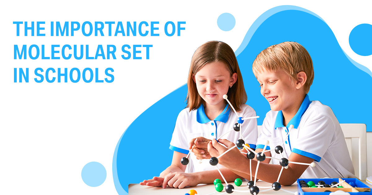The Importance of Molecular Set in Schools