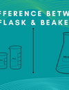 What is the difference between flask & beakers?