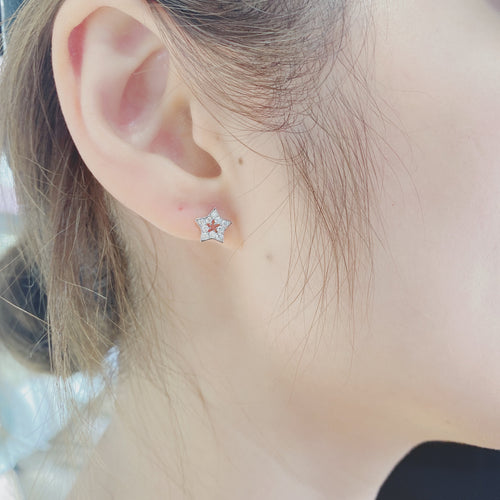 Chic Earrings Moon & Star (CE066)