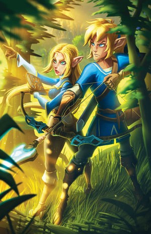 Zelda and Link (Breath of the Wild)