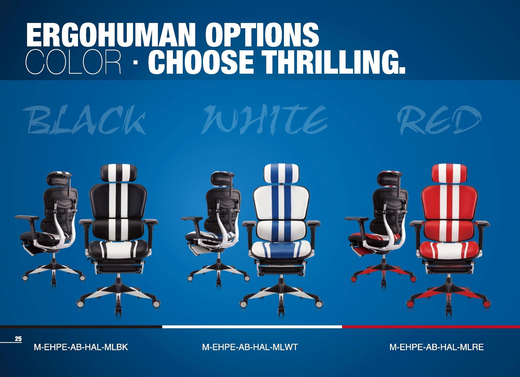 Ergohuman Gaming Chair Description