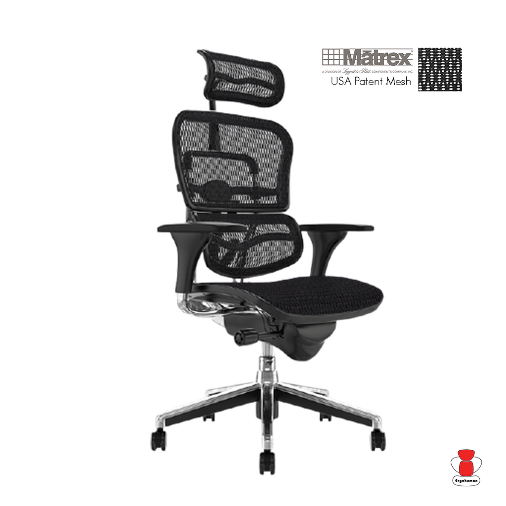 Ergohuman Classic Mesh With Headrest (5 Years Warranty)