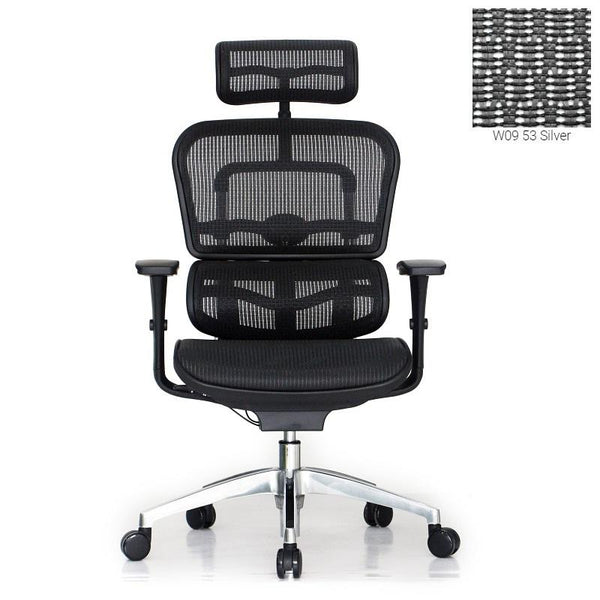 Ergohuman Pro Silver Mesh Chair (5 Years Warranty)