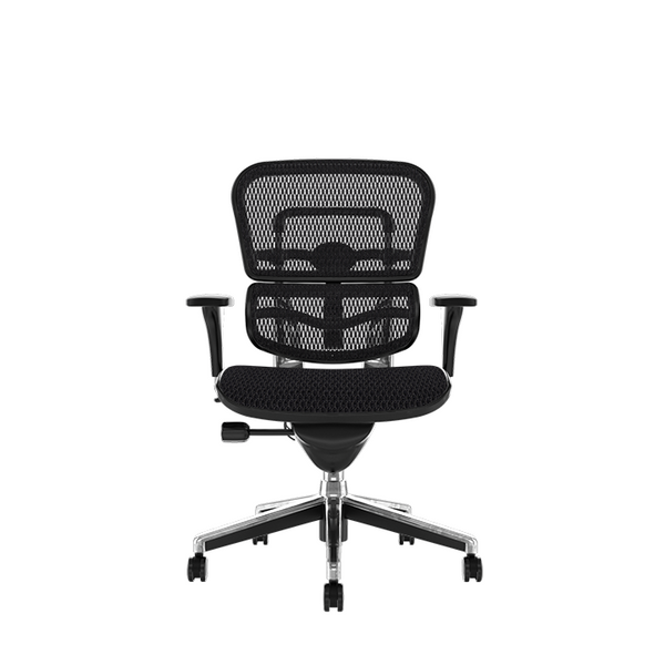 Ergohuman Classic Without Headrest Ergonomic Office Chair Front View