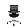 ErgohumanPlus Elite Without Headrest Office Chair Ergonomic Chair