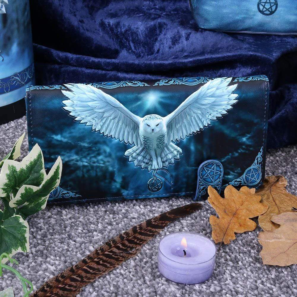 Nemesis Now Awaken Your Magic Embossed Purse (As) 18.5cm Owl Purse