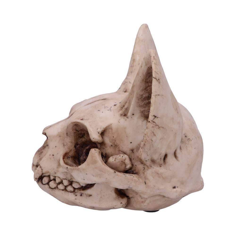 Bastet's Secret 15cm Animal Skull Figurine Medium