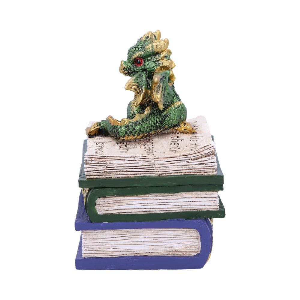 Dragonling Diaries (Green) 11.3cm Dragon Box