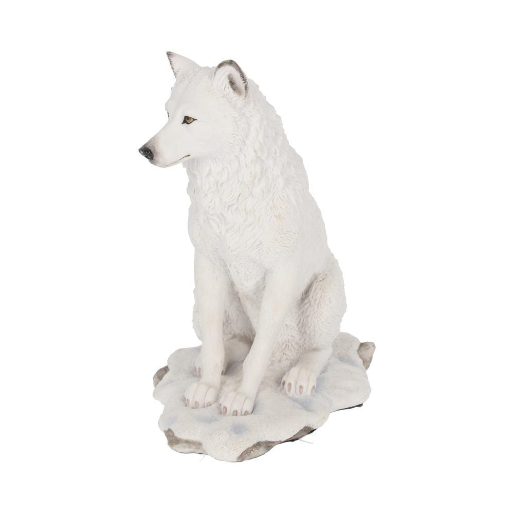 Nemesis Now Ghost Wolf 19.5cm Wolves Figurine Medium