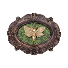 Load image into Gallery viewer, Moth Macabre 22.3cm Animal Wall Hanger
