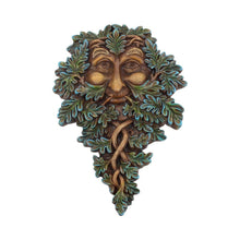 Load image into Gallery viewer, Oak Guardian 19.5cm Tree Wall Hanger