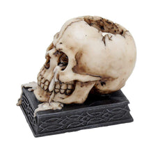 Load image into Gallery viewer, Tears Of Time 10cm Skull Candle/Tealight Holder