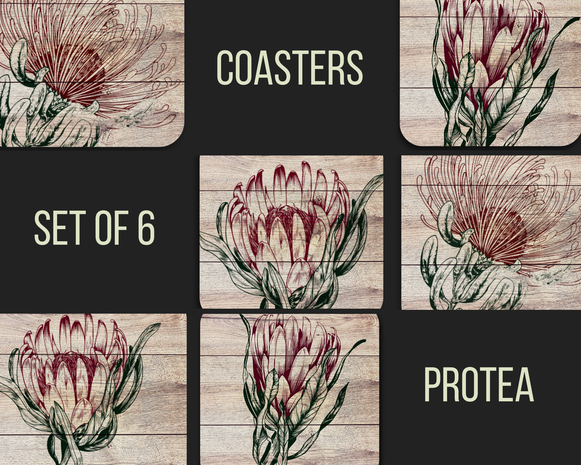 Protea Coasters (Set of 6)