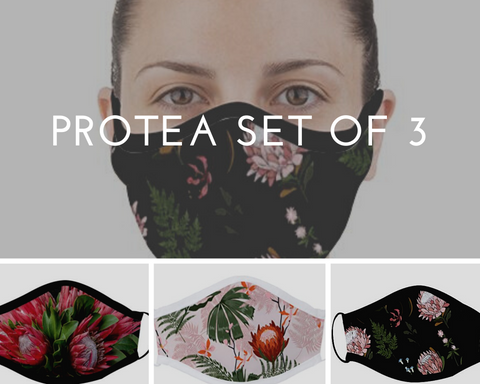 Dark Protea (Set of 3) Face Masks