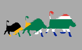 Warthog - South African Flag