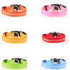 LED Pet Collar - Trendy Cyborg