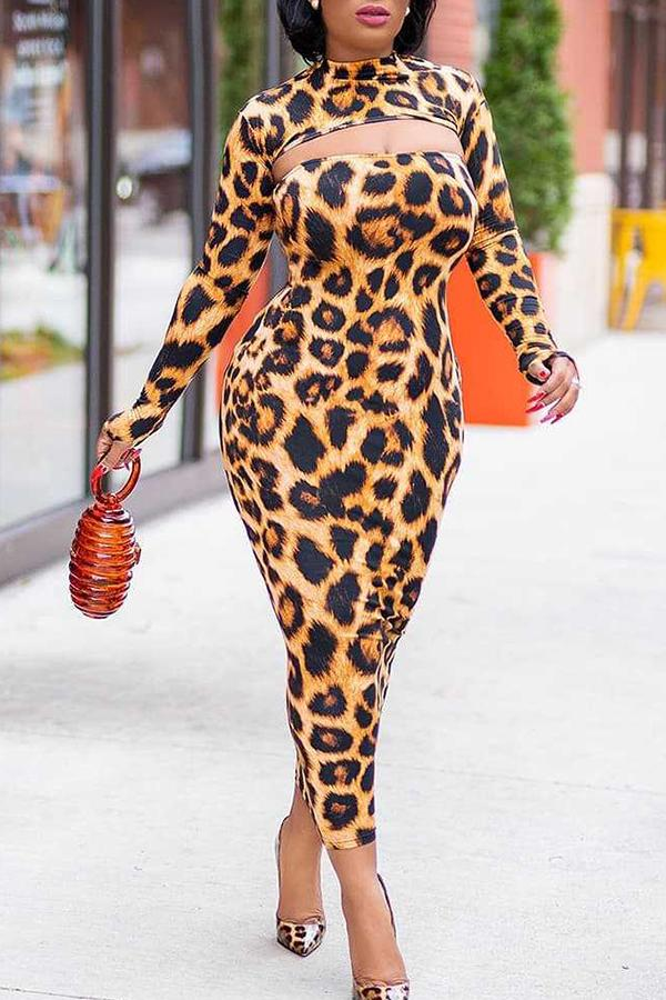 Long Sleeve Leopard Print Round Neck Casual Wear Dresses