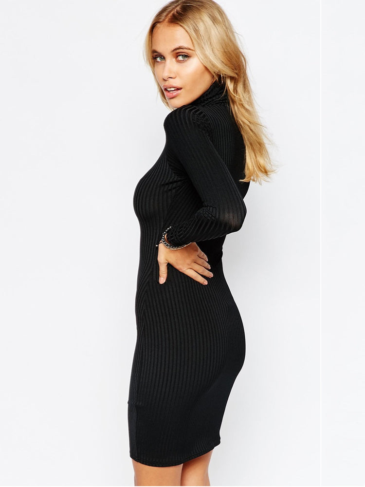 Turtleneck  long sleeve super soft bodycon dress