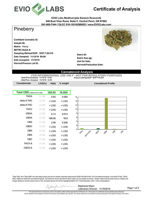 Pineberry lab report