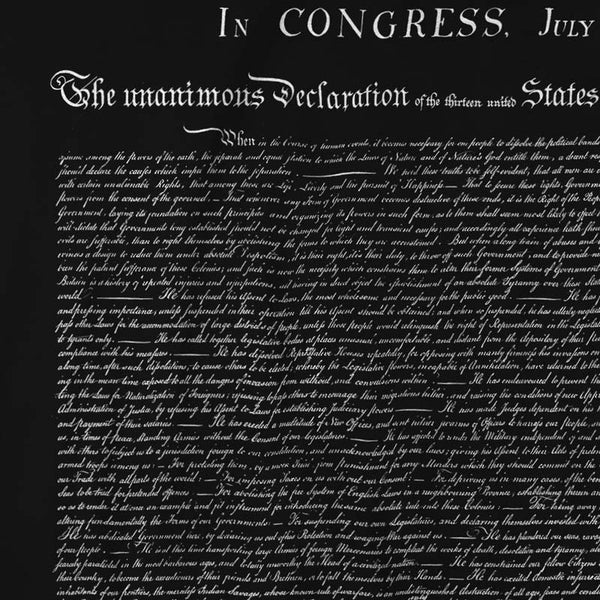 Declaration of independence t shirt liberty maniacs declaration of independence t shirt publicscrutiny Gallery