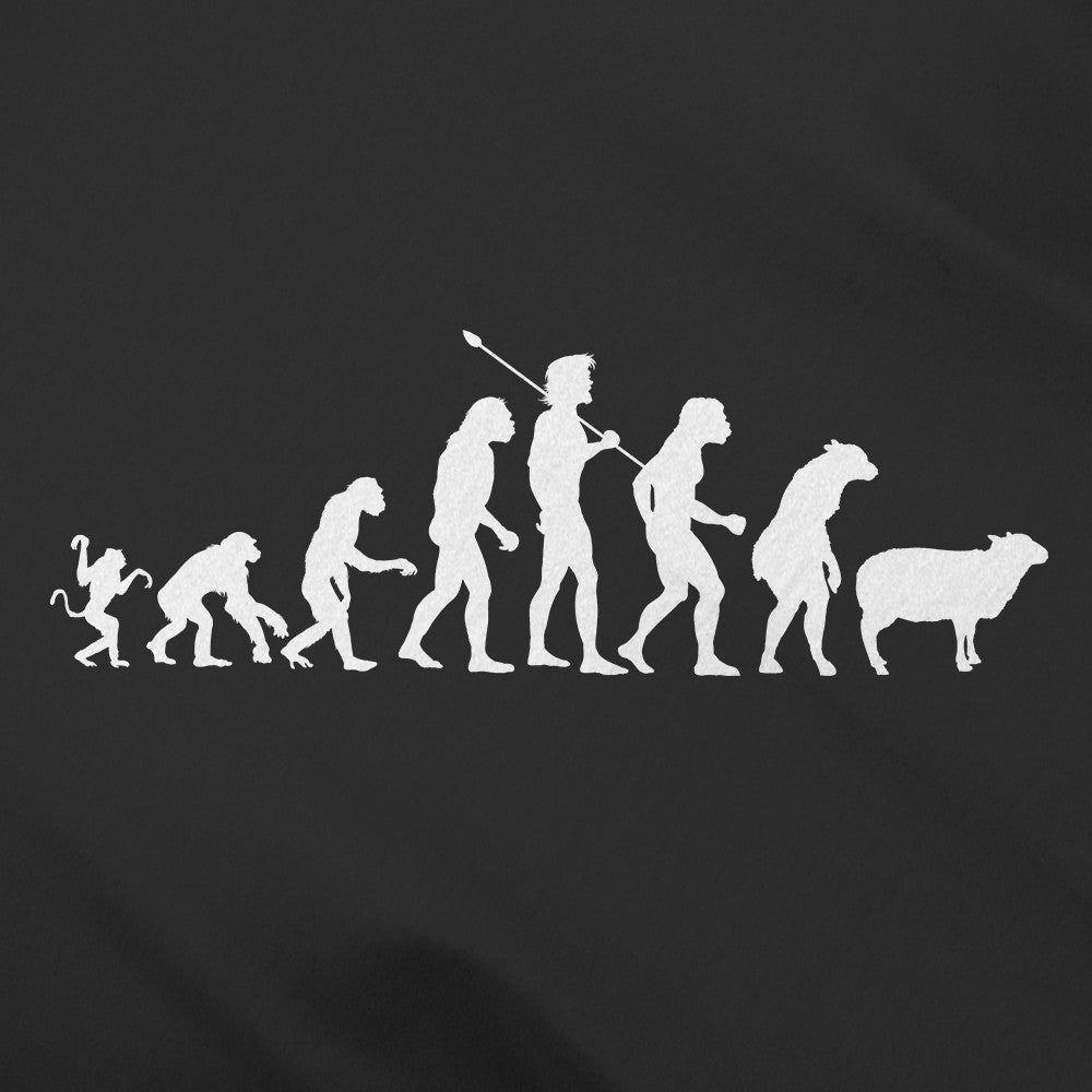 short essay on evolution of man