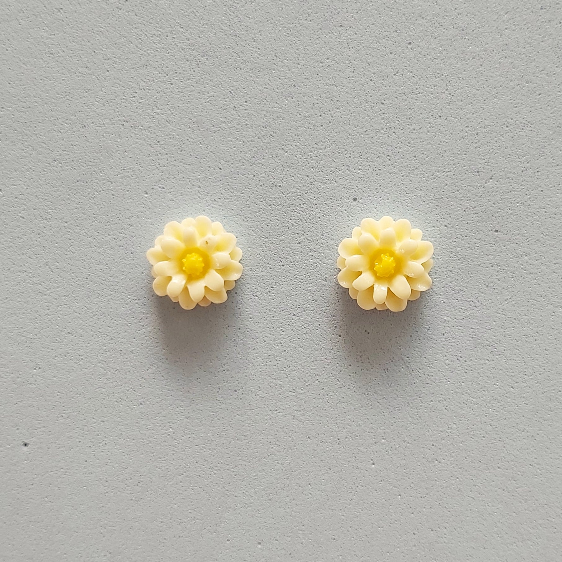 Cream daisy flower studs