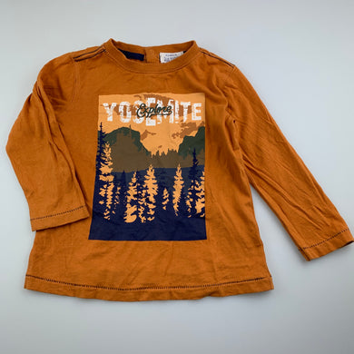 Boys Pumpkin Patch, cotton long sleeve t-shirt / top, care labels removed, FUC, size 2,