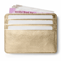 Gold Metallic Skinny Fit Card Wallet - TheArtsyBox