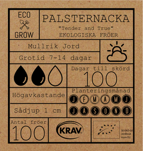 PALSTERNACKA - TENDER AND TRUE