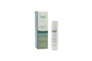 Odorata HANDS AND LIPS Gift Set