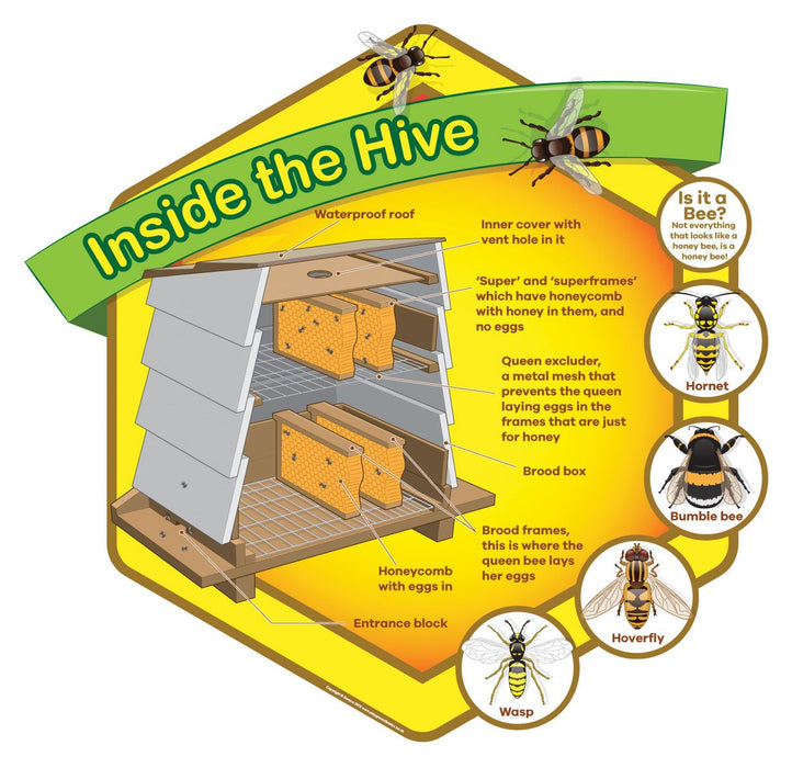 Inside The Hive Sign