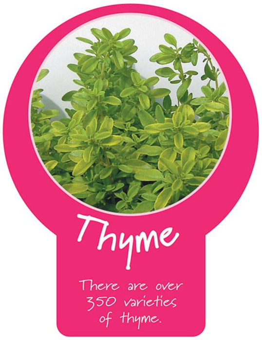 Thyme Paddle Sign