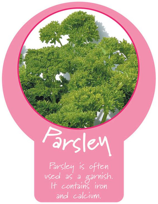 Parsley Paddle Sign