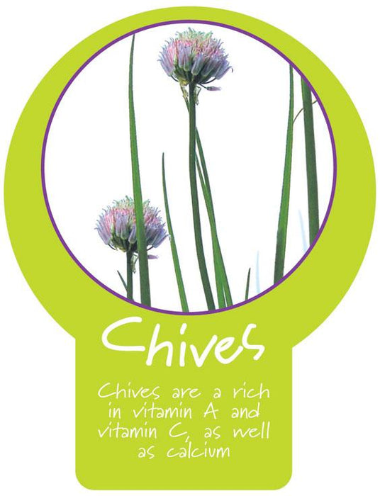 Chives Paddle Sign
