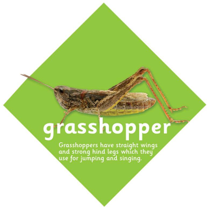 Minibeast sign Grasshopper