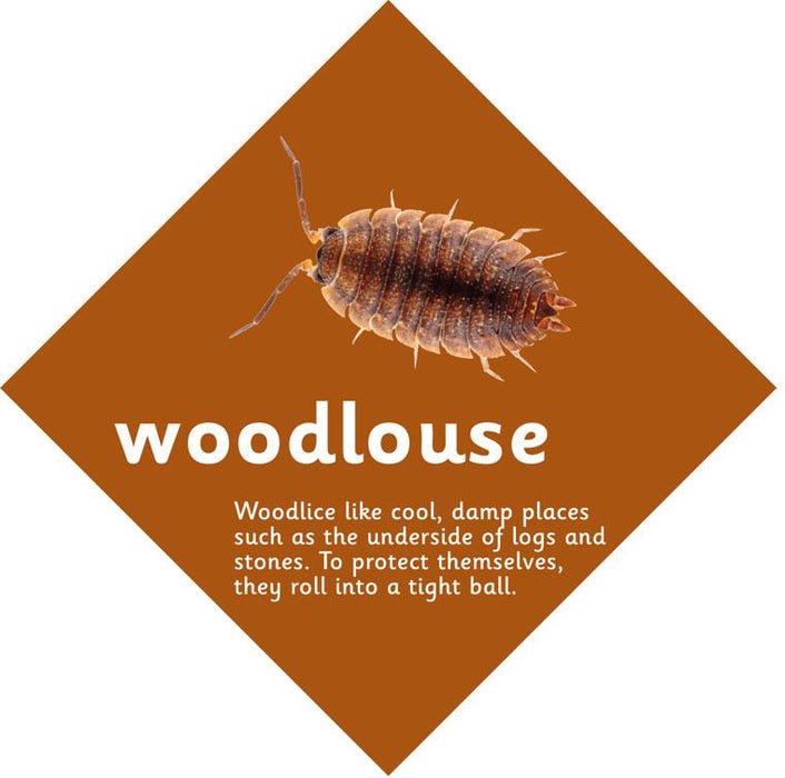 Minibeast sign Woodlouse