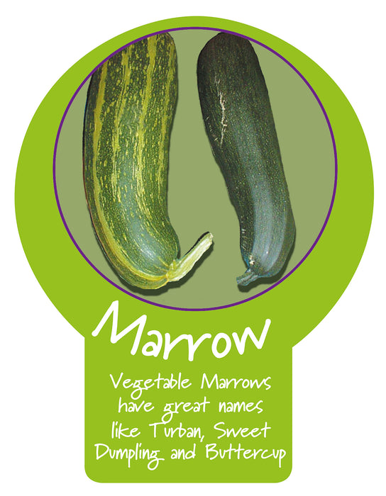 Marrow  Paddle Sign