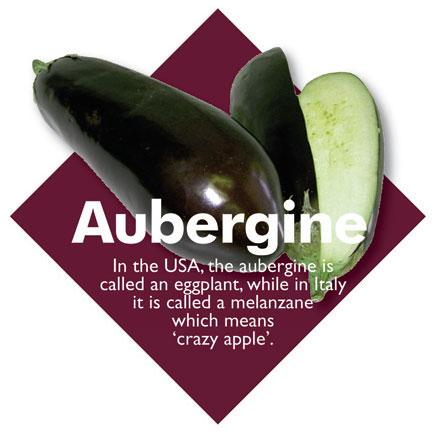Vegetable Diamond Signs - Aubergine / Large
