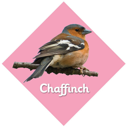 British Birds Signs Chaffinch